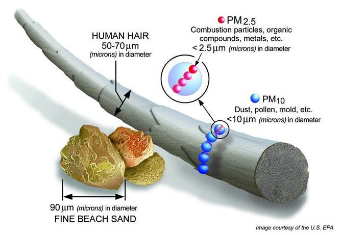 PM2.5 and PM10 Scale.jpg