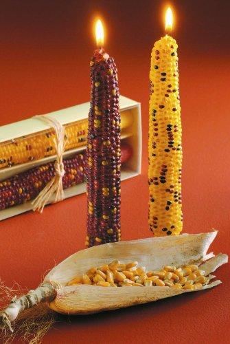 Thanksgiving Corn Candles