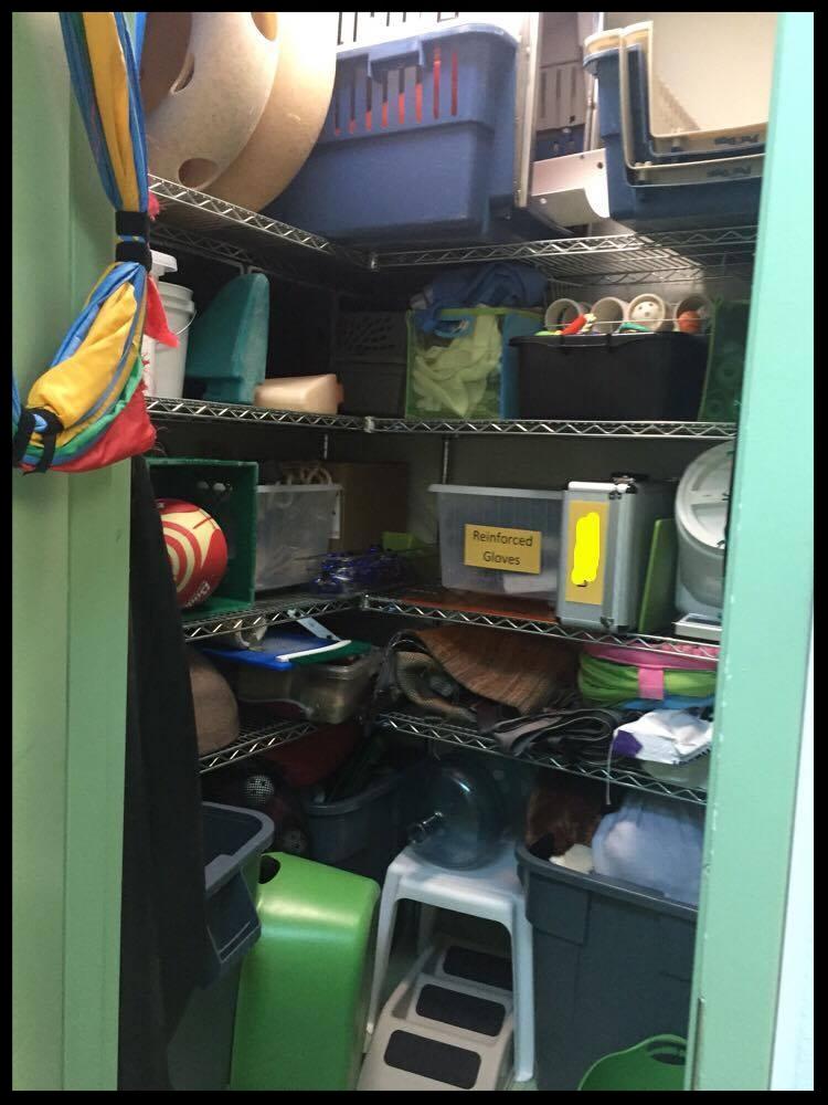 The enrichment item closet at Aquarium of the Bay.  (Photo Credit: D. Estes)