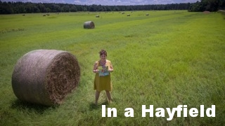 Hayfield.jpeg