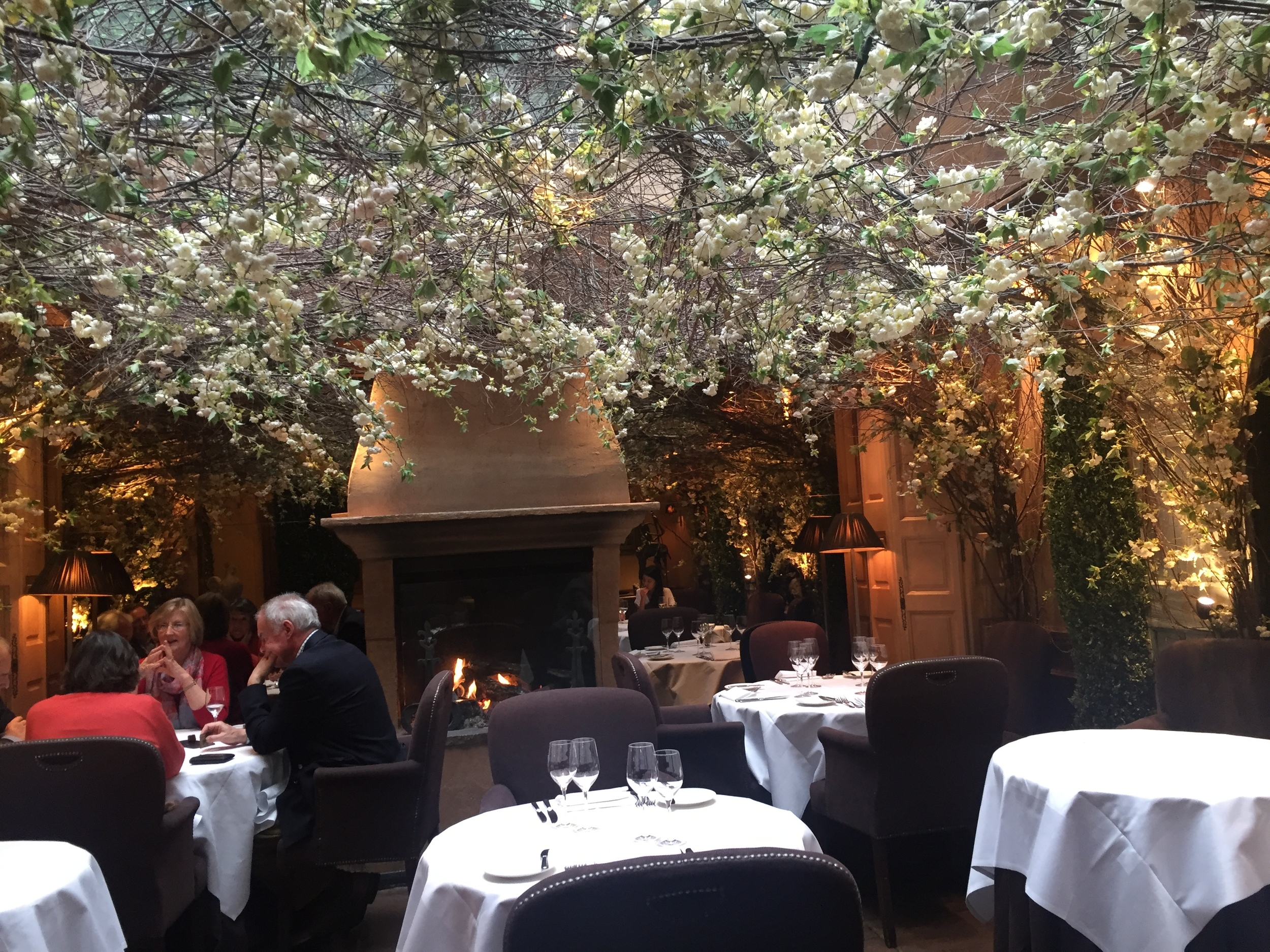 The flower covered ceiling created the perfect atmosphere for a romantic lunch or dinner date.
