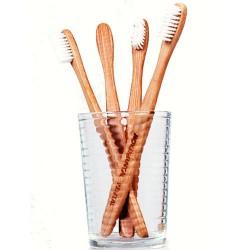 Bamboo toothbrush.jpg