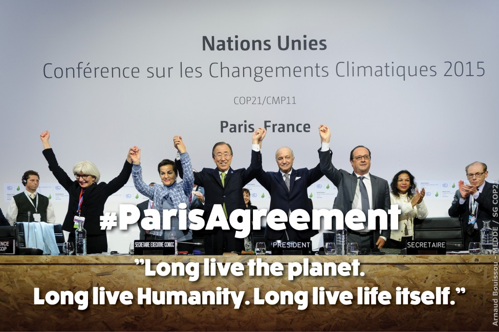 Celebrations over the climate change negotiations