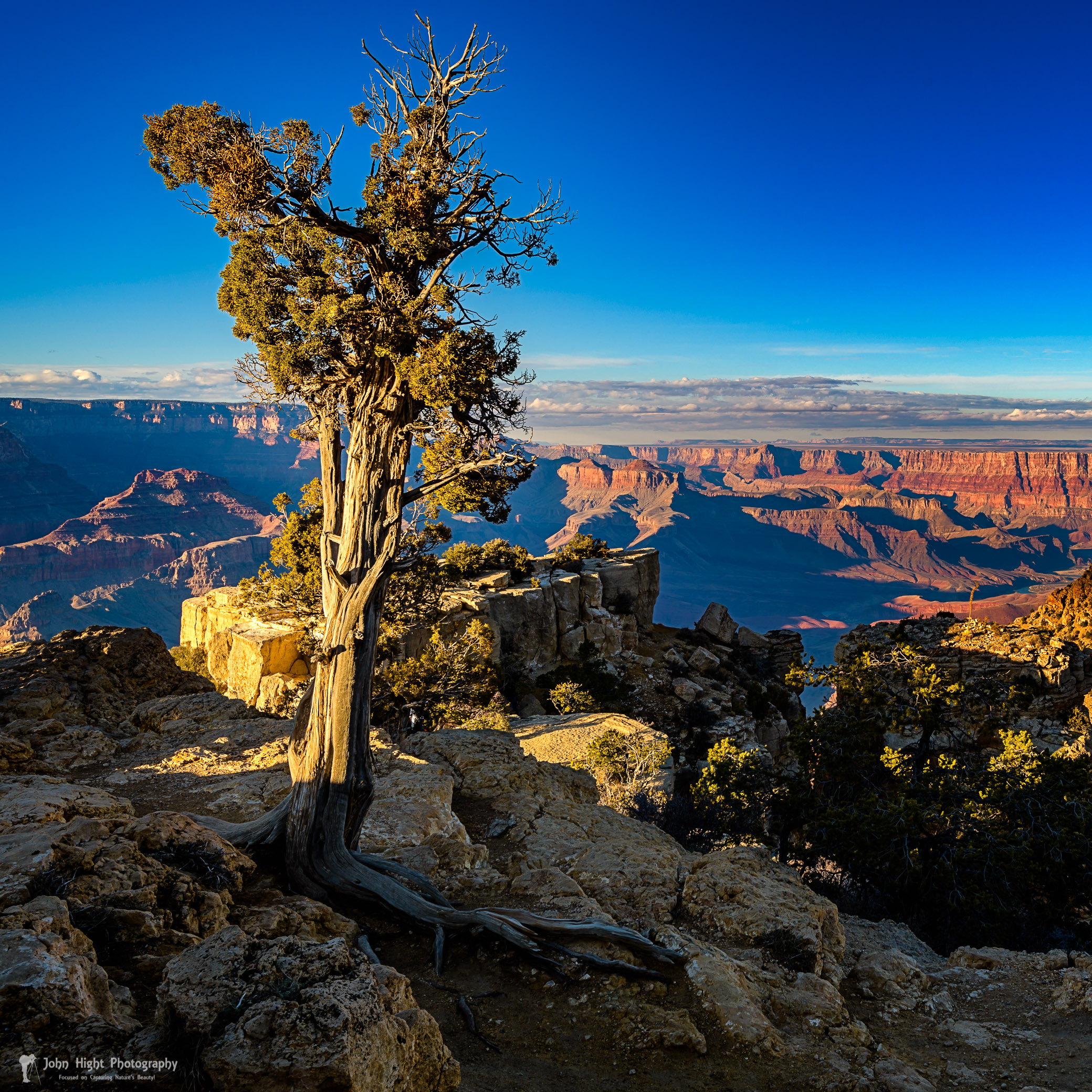 Golden Hour at Grand Canyon