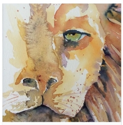 """""""Luka The Lion"""" watercolor by Bren Sparling"""