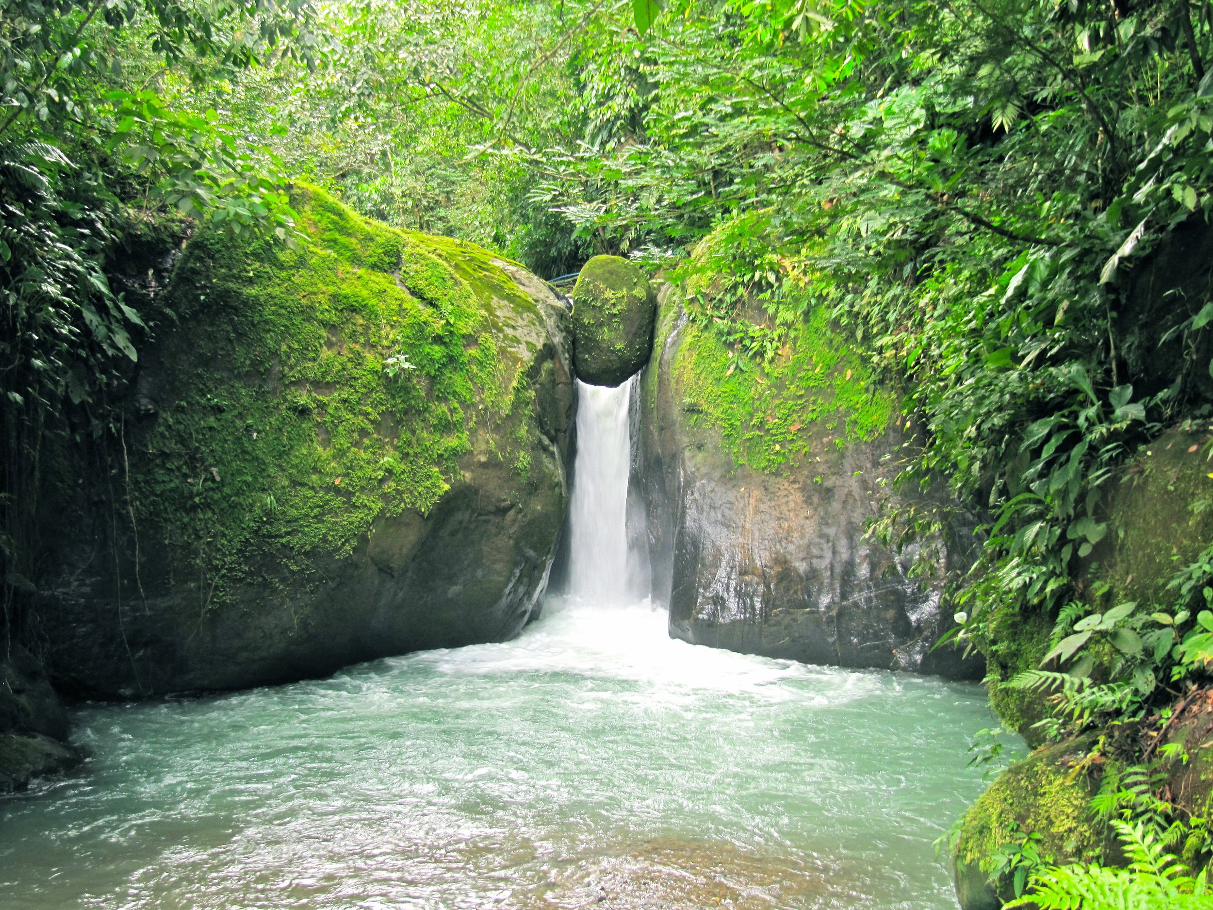 """A lot of times, after our tours, our customers will ask how to get to a waterfall or advice on other activities to do around the area. I'm a big fan of """"free to cheap"""" activities (as I like to call them). You don't have to spend all your money doing expensive tours every day. There are great hikes, many local waterfalls, secluded beaches, and even Hot Springs. All cost under $10 to do. Just come in and ask me for more information on each. I would definitely suggest the hot springs, a walk up the river road, or a drive down to the Waterfall el Pavon at the Tilapia Farm. If you'd like more info, we have it for you!"""