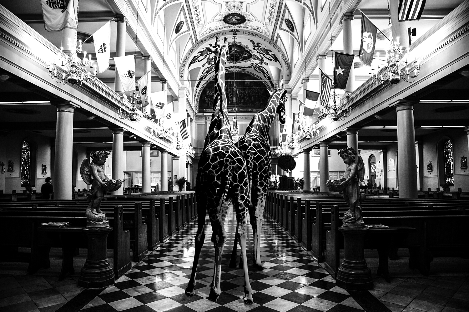 Giraffes in St. Louis Cathedral.jpg