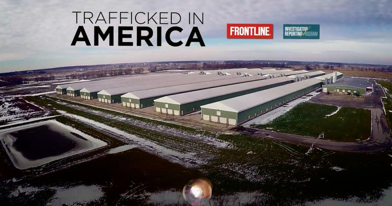 VV_trafficked-in-america.jpg