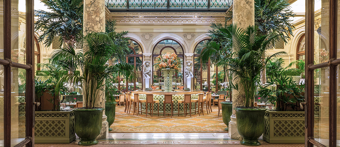 Palm Court Plaza Hotel.jpg