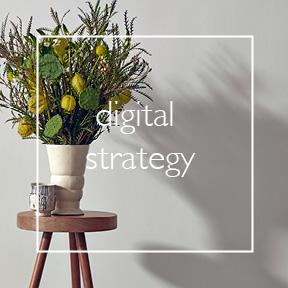 digital strategy.jpg