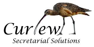 curlew.jpeg