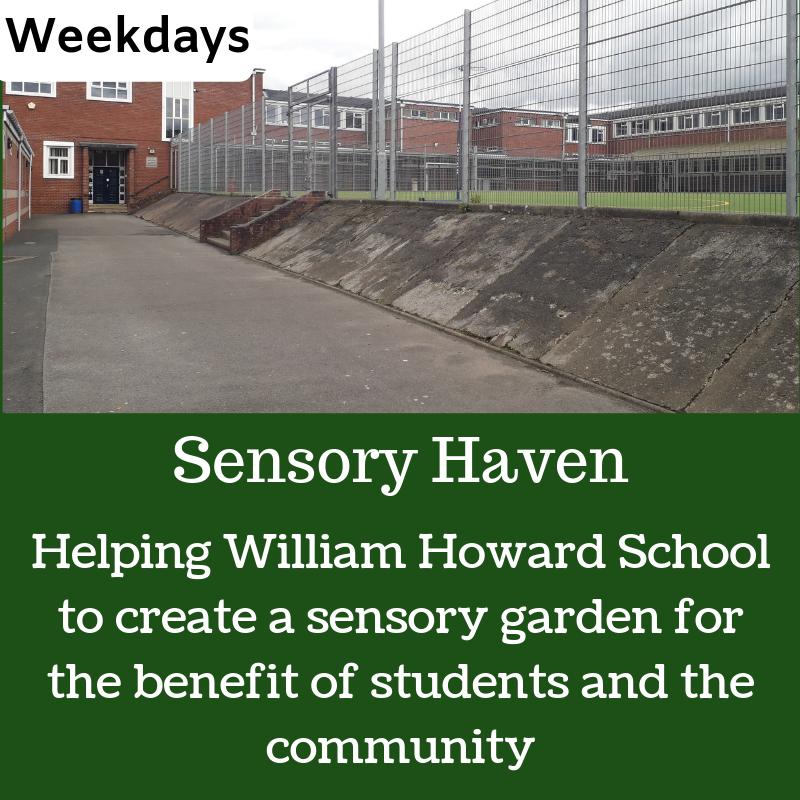 School sensory garden (3).png