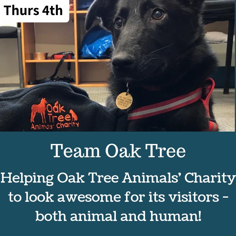 oak tree animals (3).png