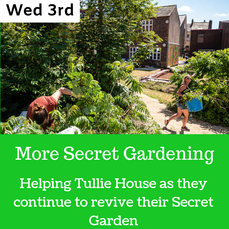 Tullie Secret Garden (3).png