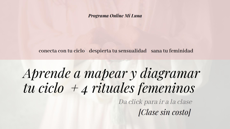 inicio web.png
