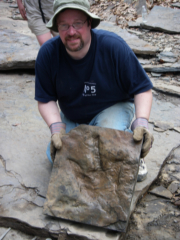 Paul with some tracks from a 28 foot long dinosaur.