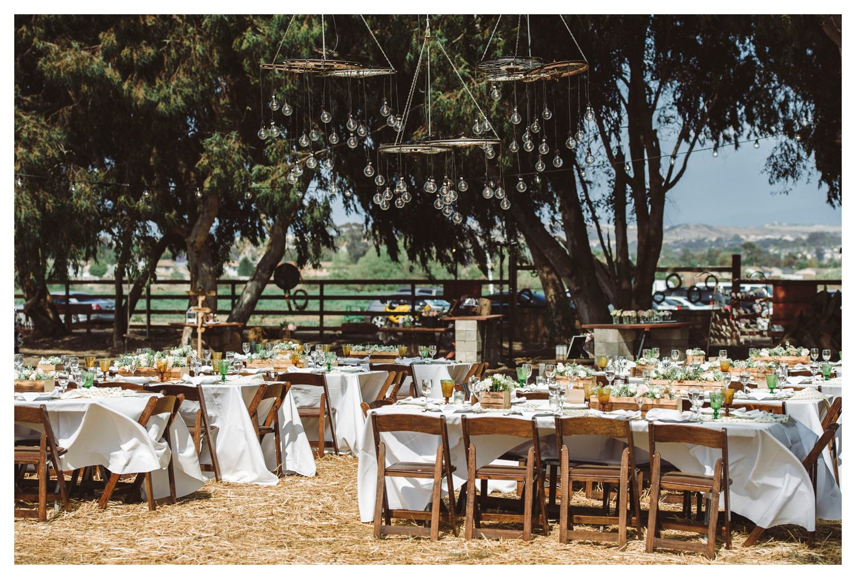 Suzies_Farm_Wedding_SinglerPhotography_TheSinglers_0014.jpg