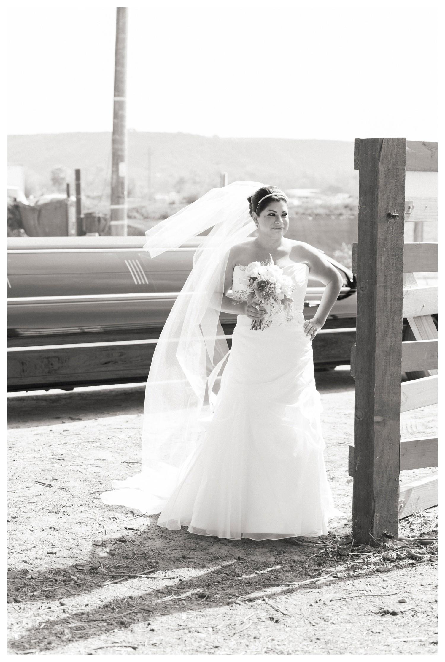 Suzies_Farm_Wedding_SinglerPhotography_TheSinglers_0016.jpg
