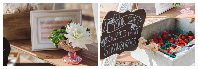 Suzies_Farm_Wedding_SinglerPhotography_TheSinglers_0031.jpg