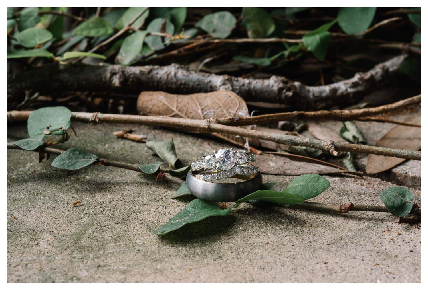 Wedding Rings in amongst twigs and leaves