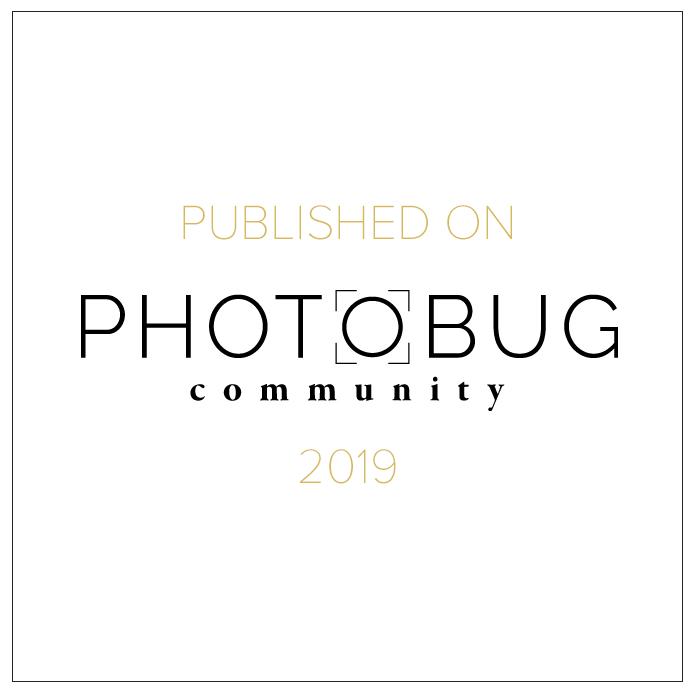 Photobug community
