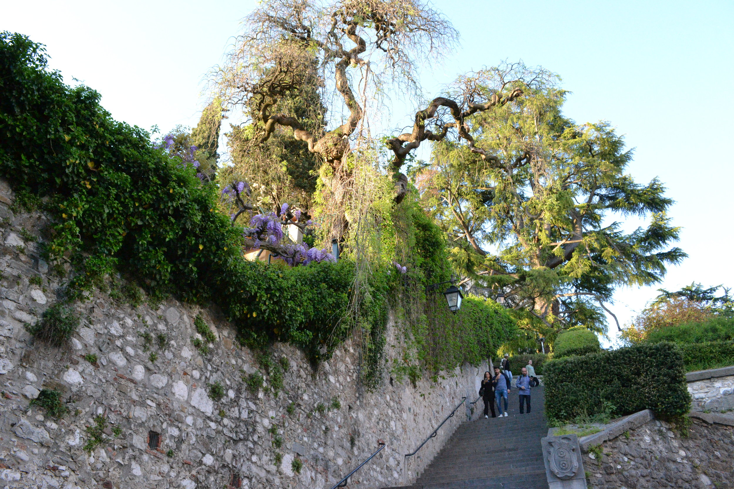 La scalinata per salire al Castello, Udine. Foto di Greta Cinalli