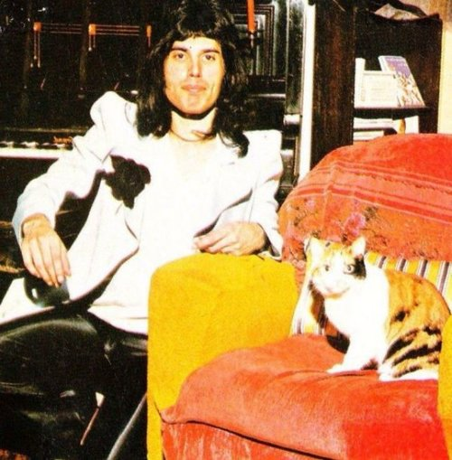 Freddie Mercury in Holland Road with Jerry…