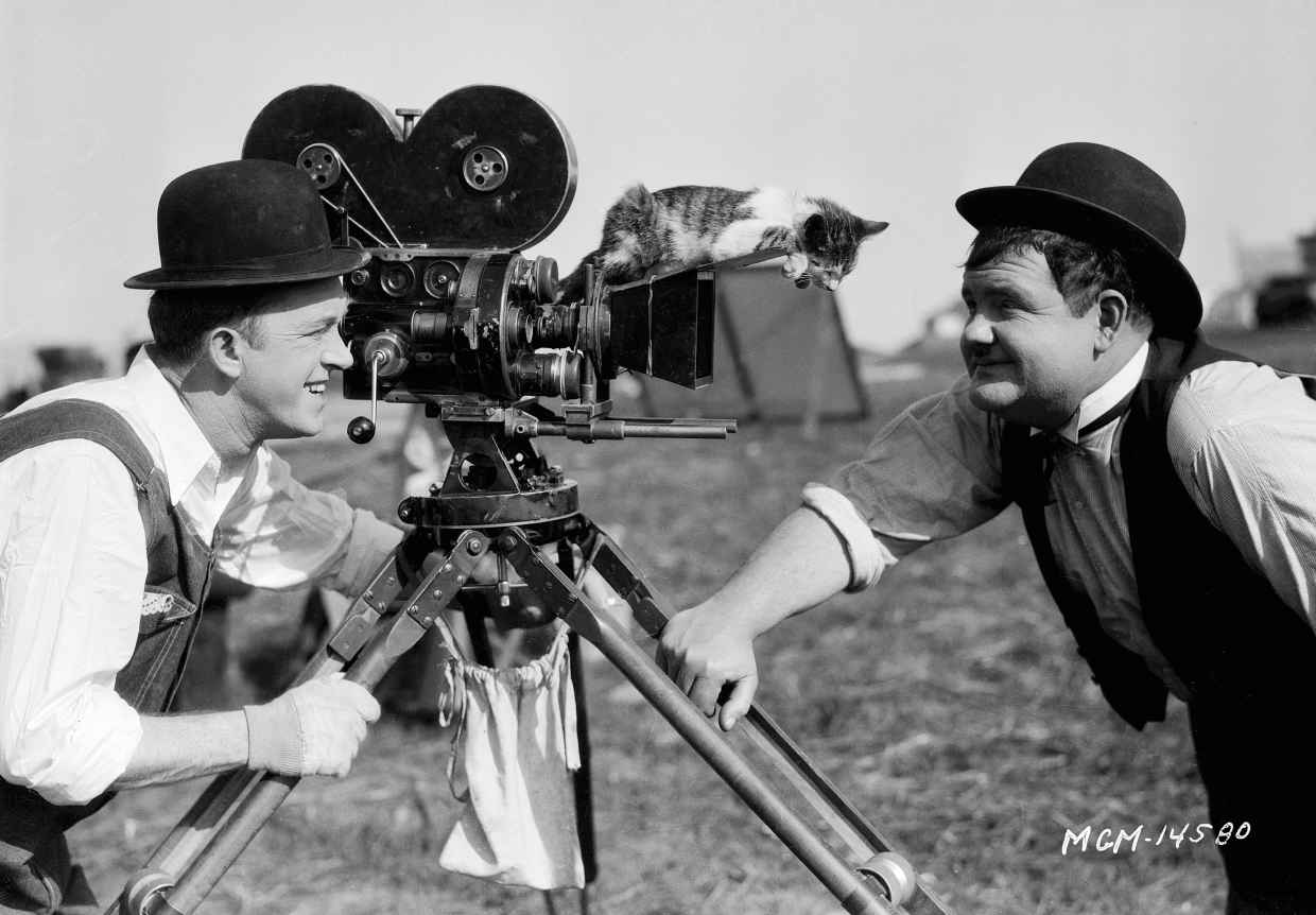 laurel-hardy-and-a-cat-on-the-camera.jpg