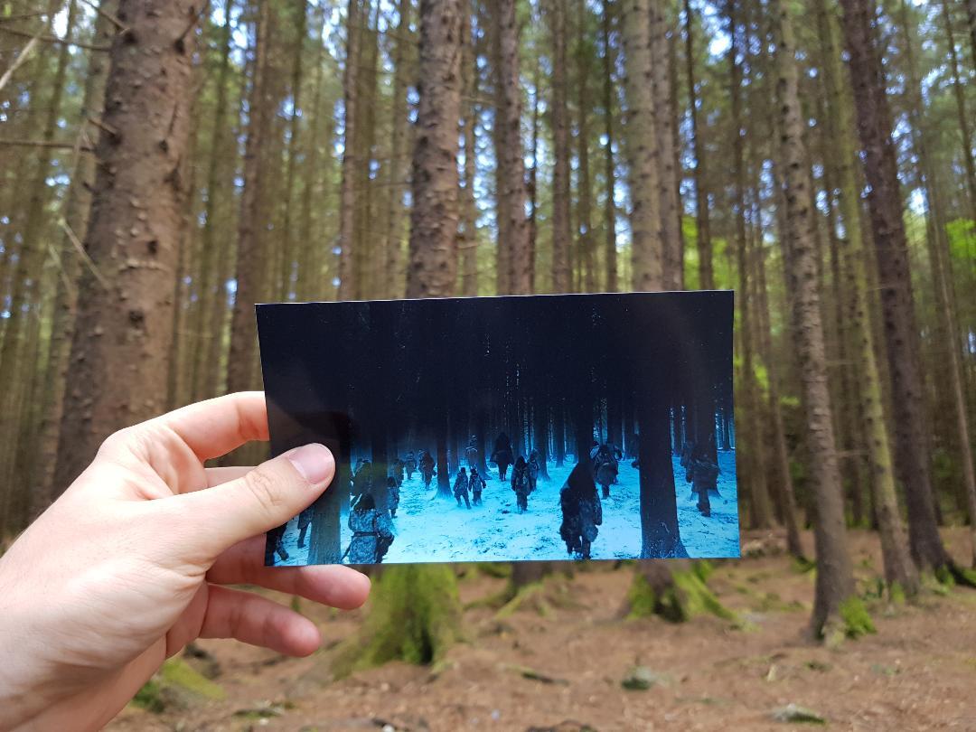 Tollymore Forest, Irlanda del Nord. Foto di Greta Cinalli. Fotogramma:  Game of Thrones , HBO