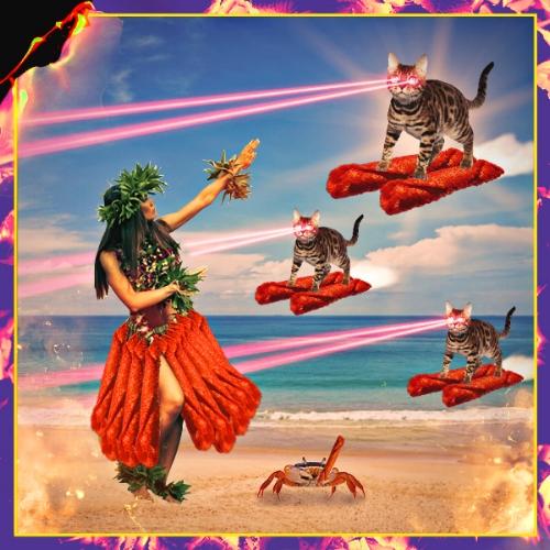 Takis_lasercats_hawaii2.jpg