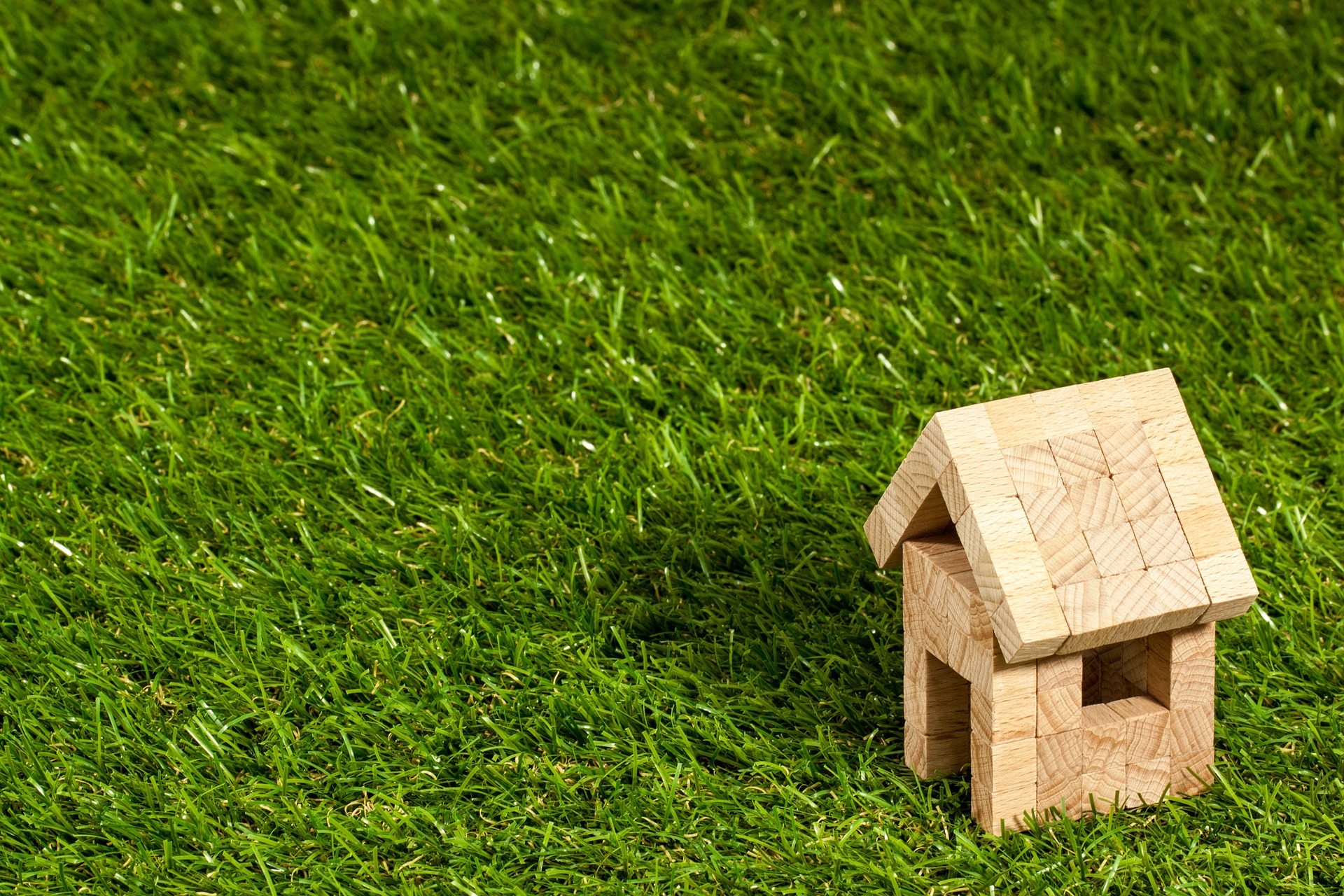 little wooden house in grass