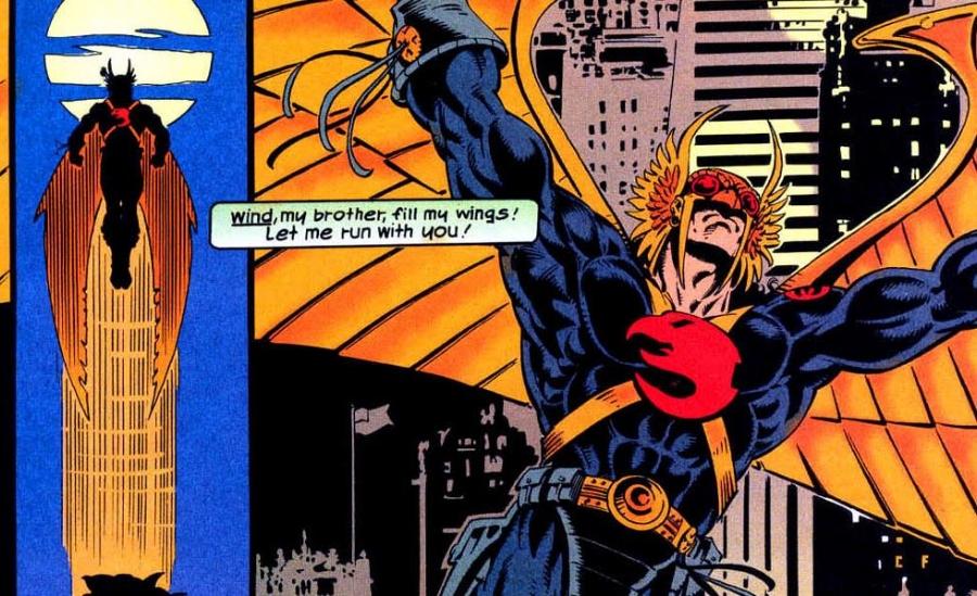 6 Hawkman 1993.JPG