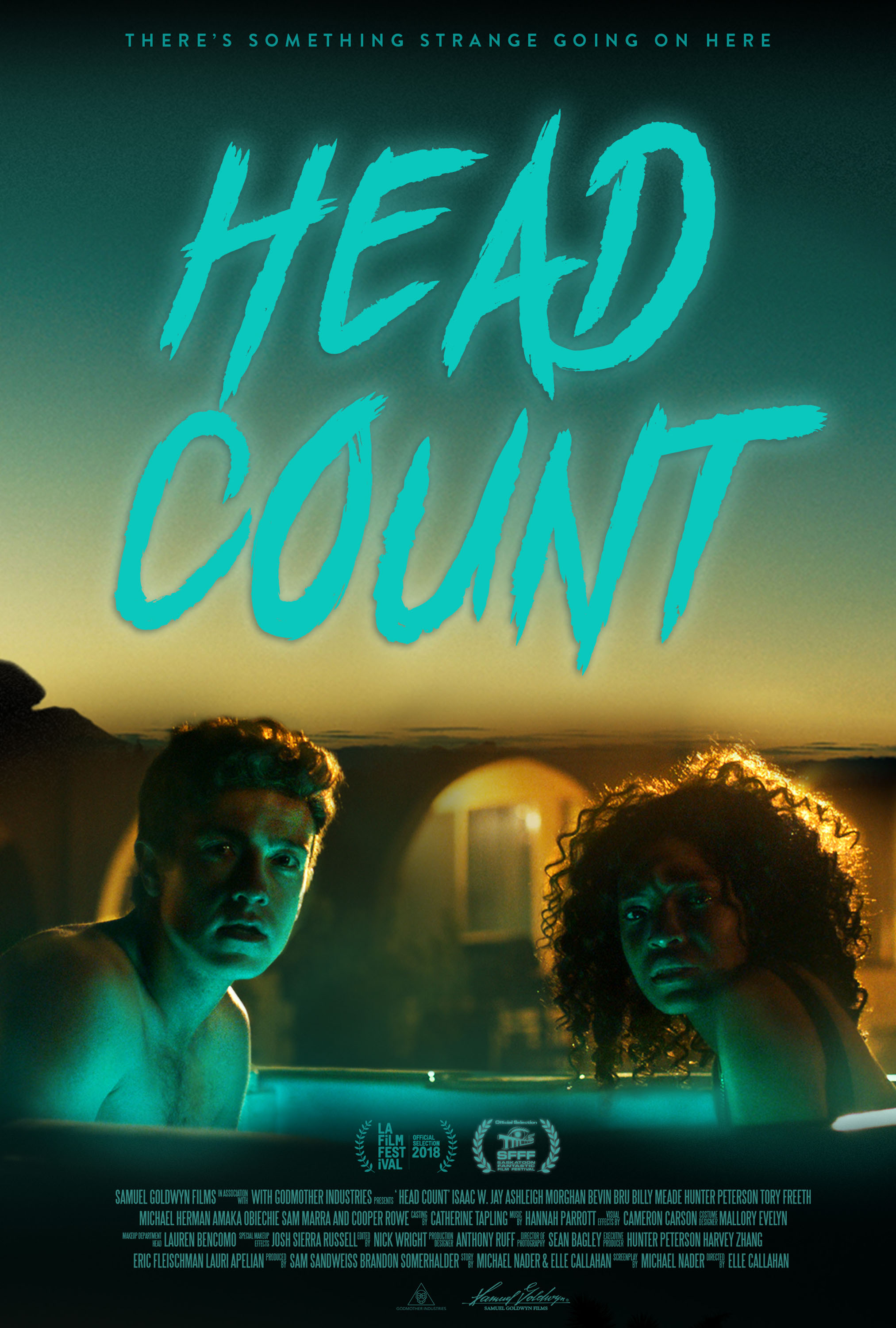 Head Count Poster_web.jpg