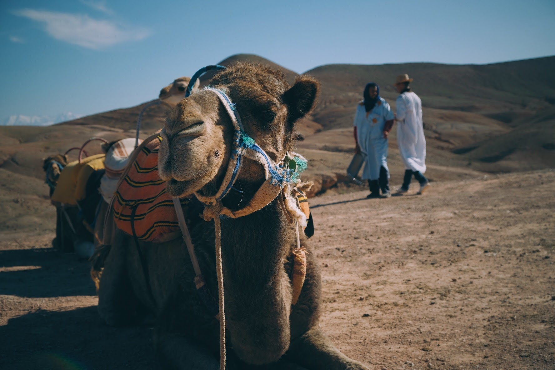 fatima – queen of the desert, sahara