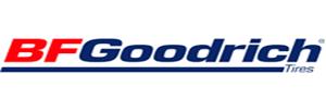 bfg-header-logo-300.png