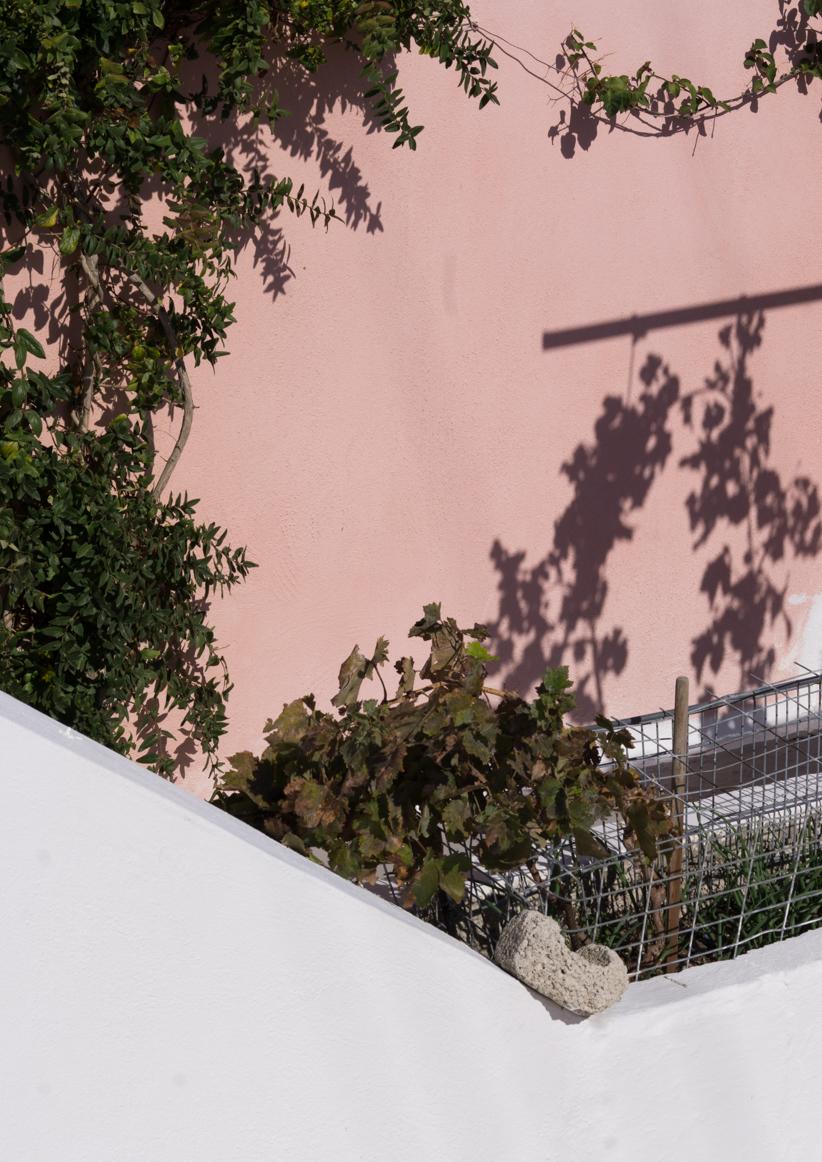 Greece_Sedona Walker-Morrissey-14.jpg