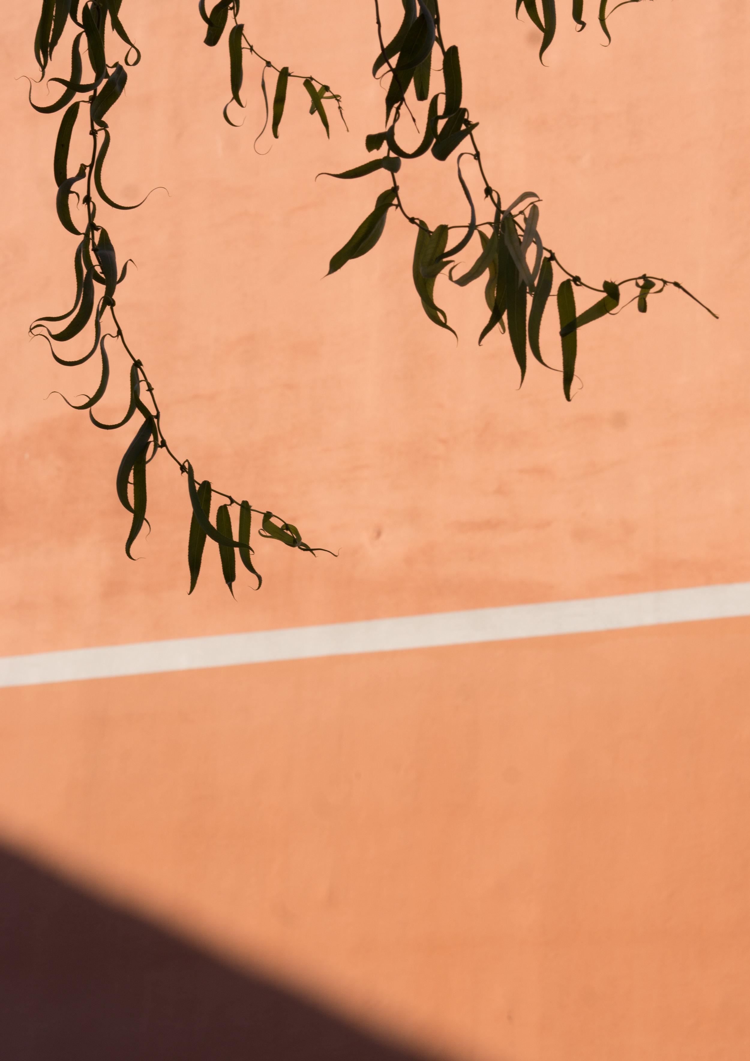 2018_Sedona Walker-Morrissey-3.jpg