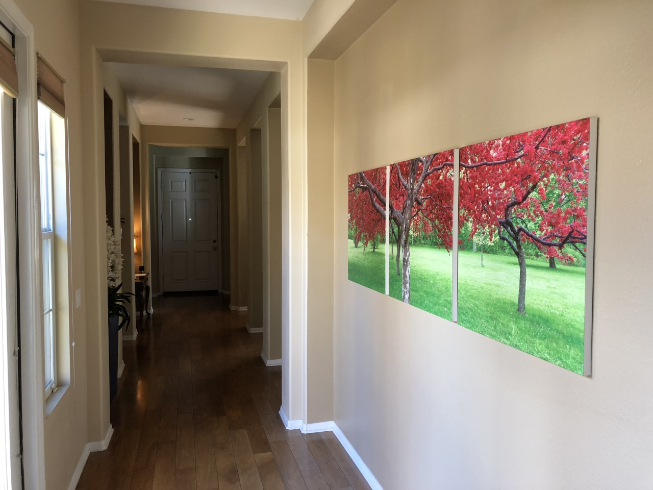 Hallway Pics.jpg