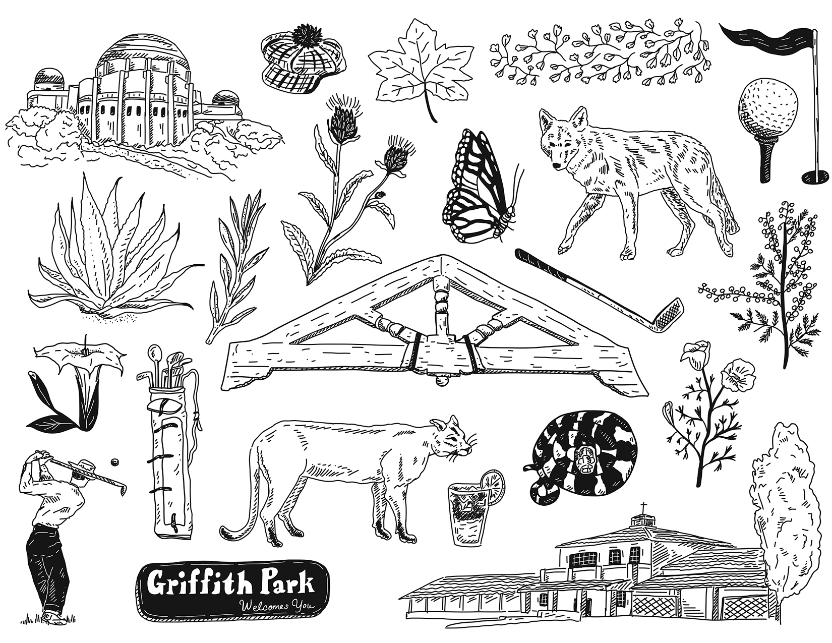 Griffith Park/Wilson & Harding Golf Club Flash