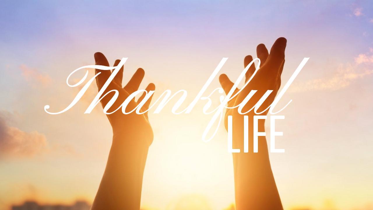 thankful life 11.12.17.jpeg