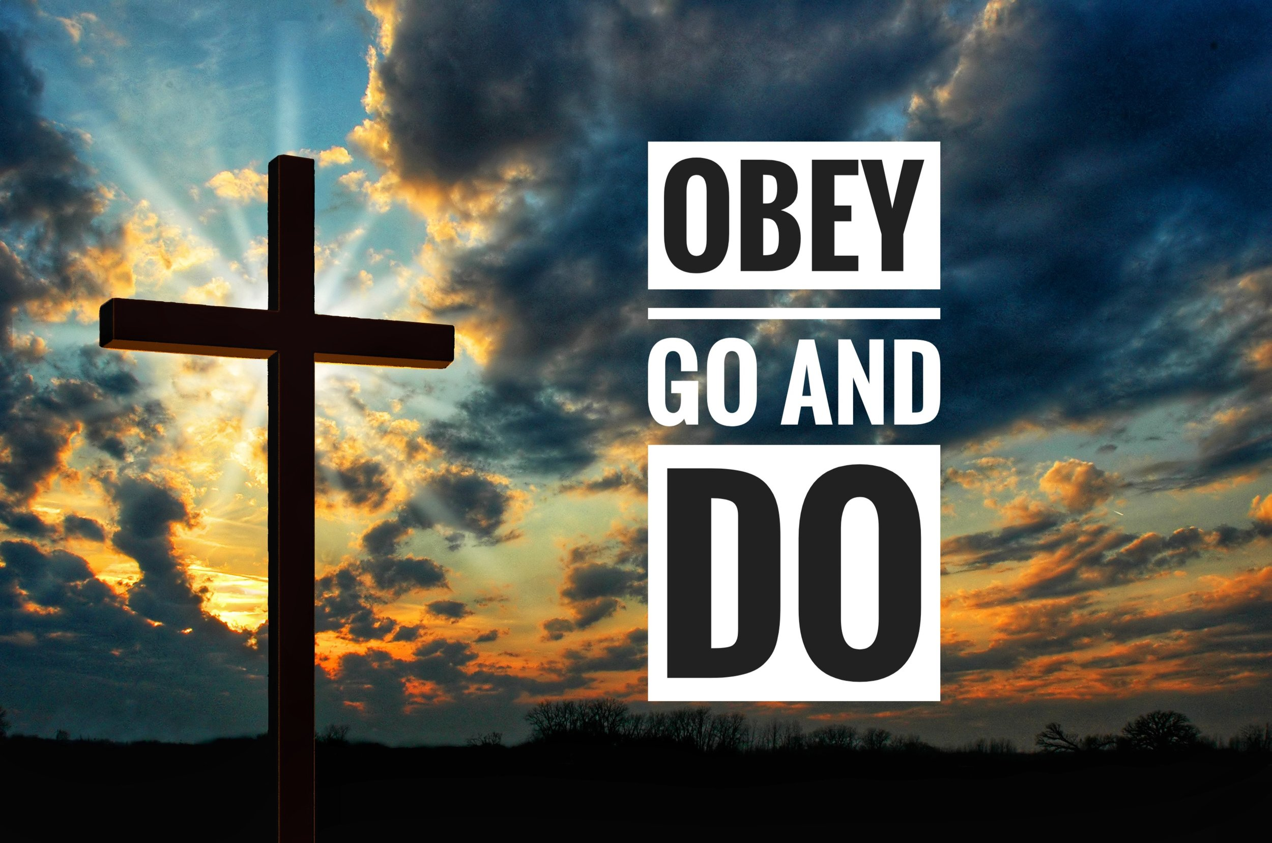 obey go and do 07.14.19.jpeg