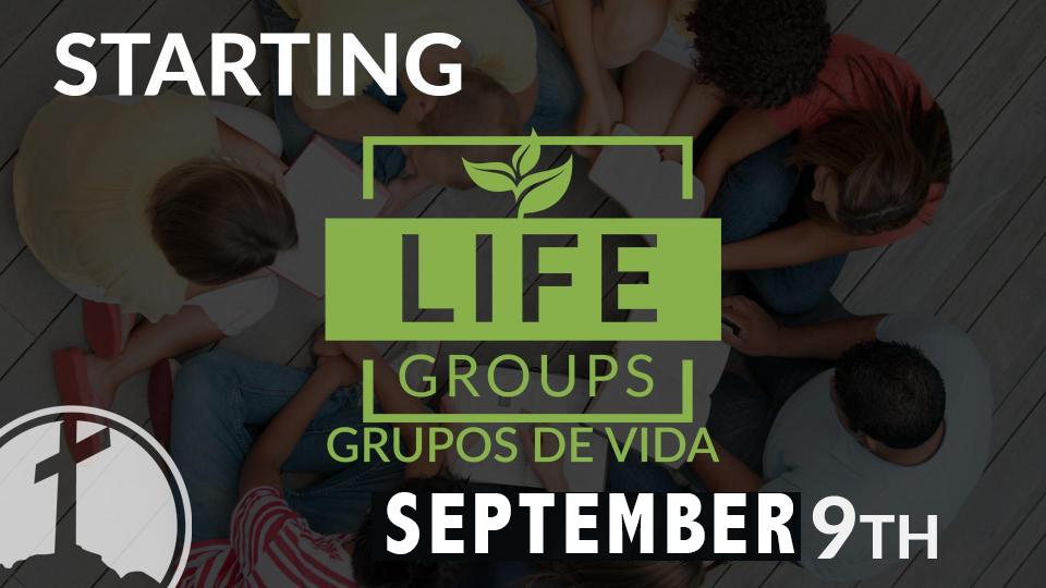 Grupos de Vida 2018 copy.jpg