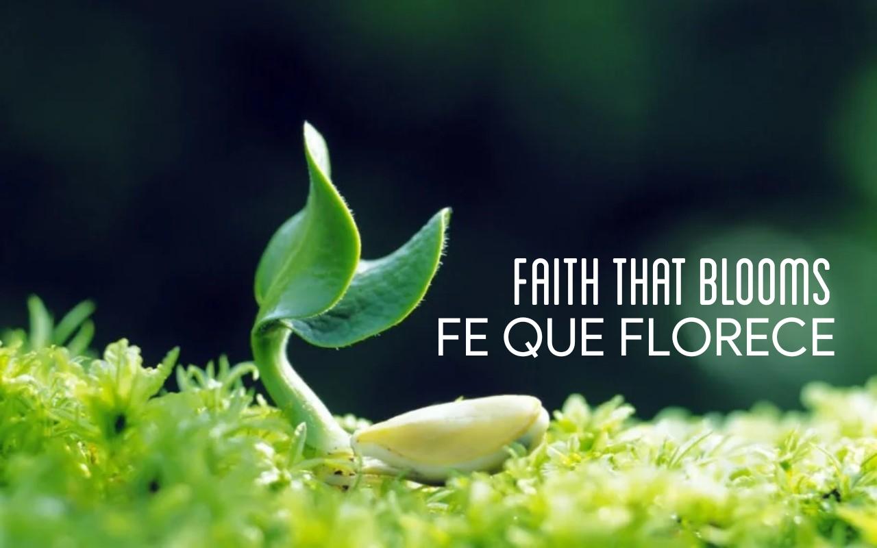 fe que florece 08.28.19.jpg