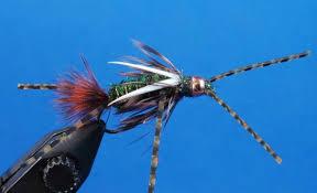 Chile Fly Fishing | Fly Fishing Chile | Chile Fishing Guide | Fly Fishing Chile Guide | Patagonia Trout Adventures |