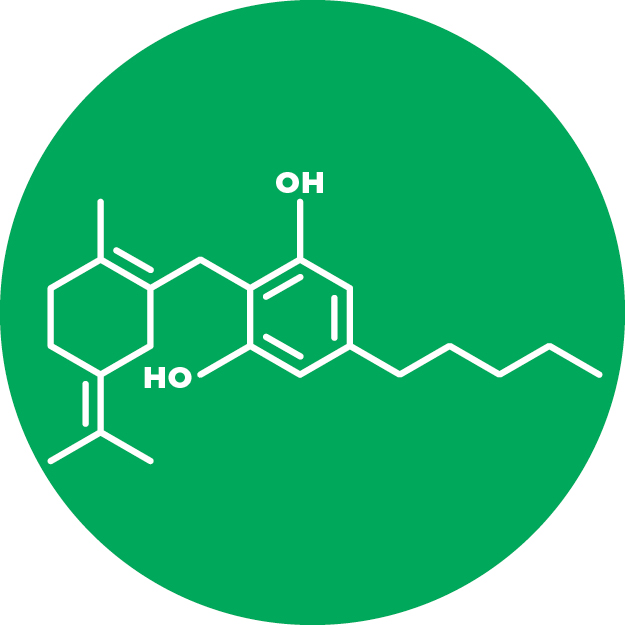 Cannabigerol (CBG)   THC and CBD begin as Cannabigerol (CBG). It is non-psychoactive and found in trace percentages in Medicinal Cannabis.