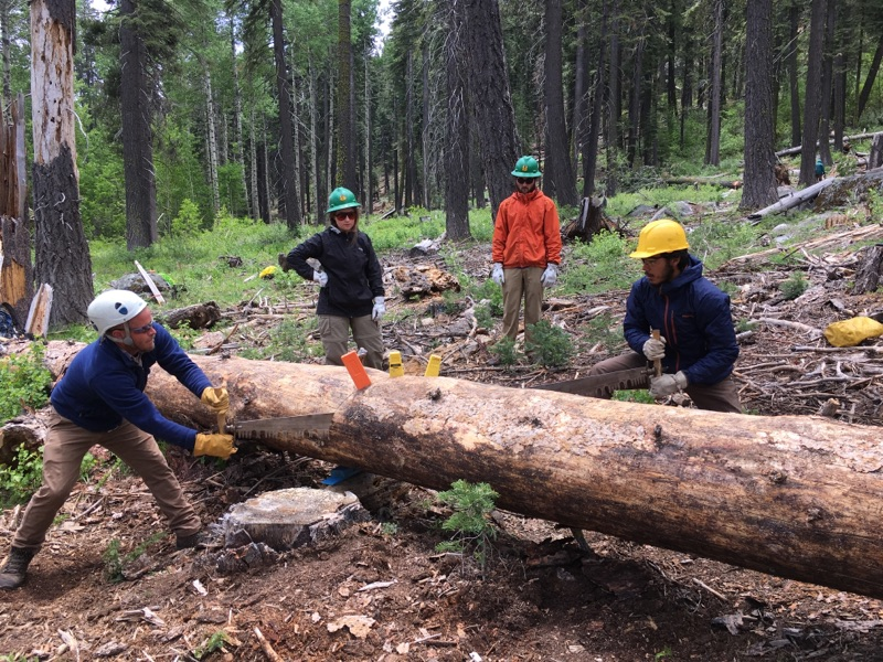 Trail recovery is not beginners work. These Sequoia Roots Restoration Corp members must complete Wilderness Ranger Academy and pass the Crosscut Saw Certification. All of our corp members and volunteers have done so. Congrats Miguel Pena, Josh Moore, Daniel Mejia, Pedro Garcia and Liz Rivera. -