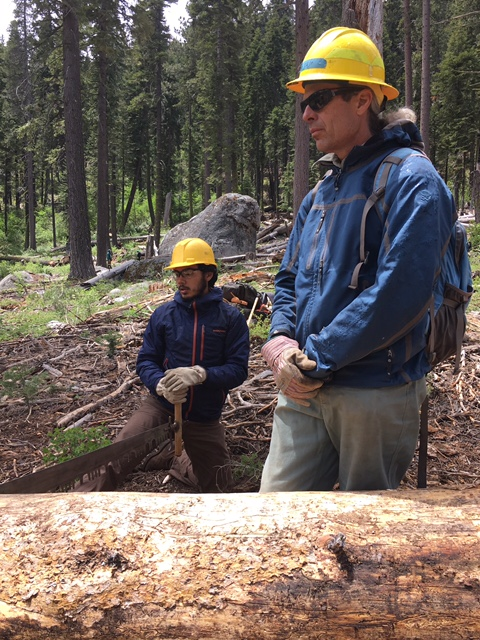 Sequoia Roots Restoration Corp will bottomline the trail and tree planting activites for WildPlaces. -