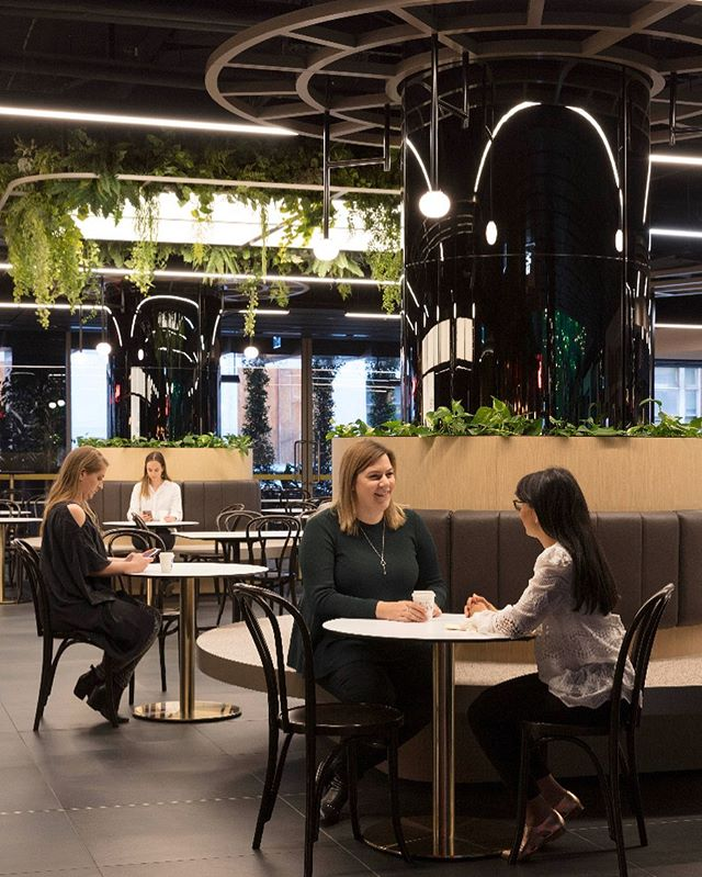 Picturesque French Bistro settings informed the design intent of the new hospitality precinct at St Collins Lane – perfectly fitting for its location at the Paris end of Collins St in Melbourne CBD.  Dark oak bentwood furniture, bronze table bases & beautiful greenery create the ideal setting for escaping the busy streets of Melbourne. . @stcollinslane #melbourne #melbourneshopping #melbourneweekender #style #minimal #interiordesign #personalshopping #retail #business #interiorinspiration #retaildesign #australianbusiness #customerexperience #ceolife #ceo #retailstrategy #retaildesigner #designinspiration #branding #instadesign #instadesigner #interiordesignersofinsta #shoppingcentre #luxury #concierge #sophistication