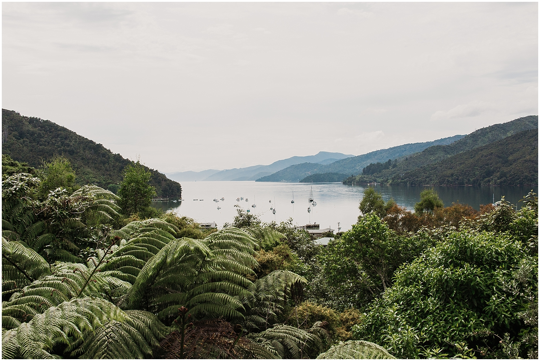 Anikiwa Bay - Marlborough Sounds - Carmen Peter photography