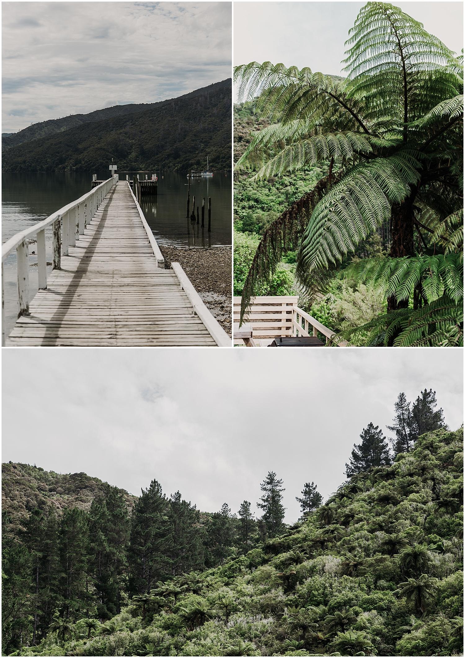 Marlborough Sounds - Anakiwa Bay - Carmen Peter Photography